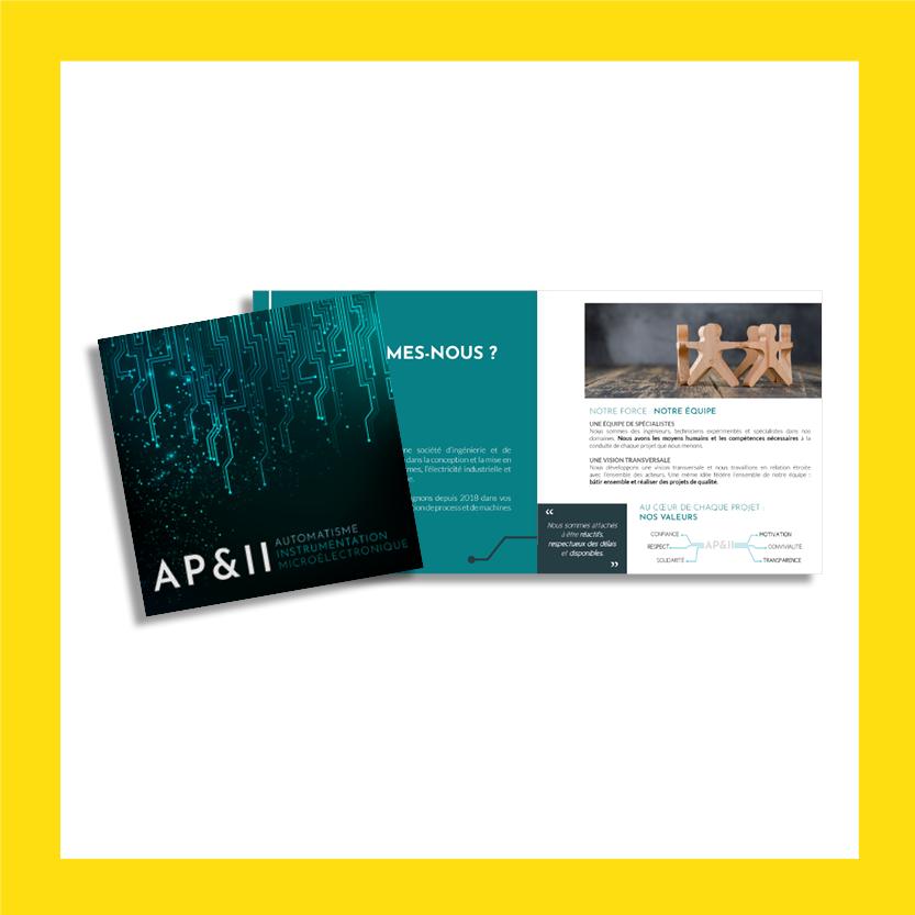 vignette brochure AP&II
